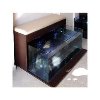 Fish spa Exclusive two seater