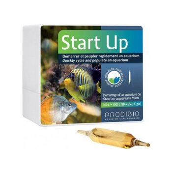 Prodibio Startup 12Amp