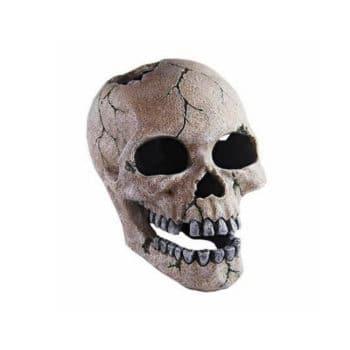 Haquoss Human Skull 3
