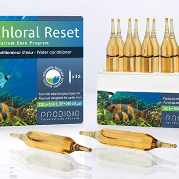 Prodibio Chloralreset 12Amp