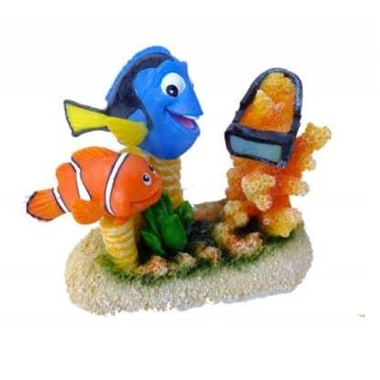 Aqua Della Clown fish -6-