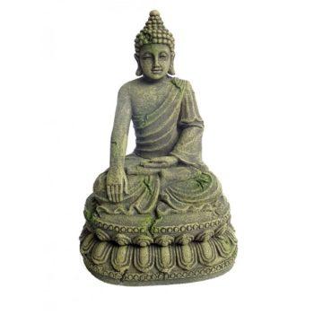 Aqua Della Bayon-Buddha