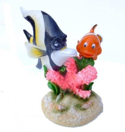 Aqua Della Clown Fish -3-