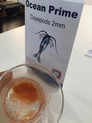 Dvh – Ocean Prime Copepods 2mm