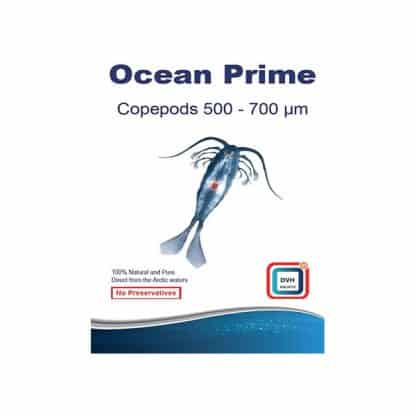 Dvh – Ocean Prime Copepods 500-700mm (Microns)