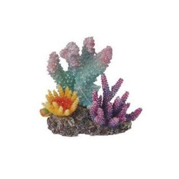 Haquoss Reef Dream 2 – 10,5×6,5x9cm