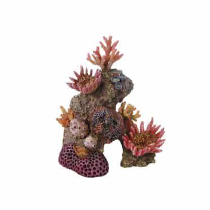 Haquoss Reef Dream 8