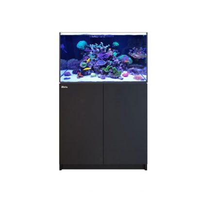 Red Sea Reefer 250 Black