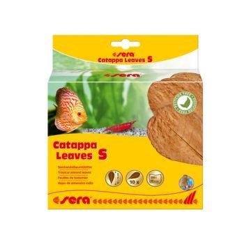 Sera Catappa Leaves S