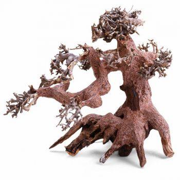 Haquoss Bonsai Driftwood 1