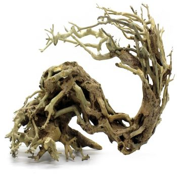 Haquoss Bonsai Driftwood 11 Medium