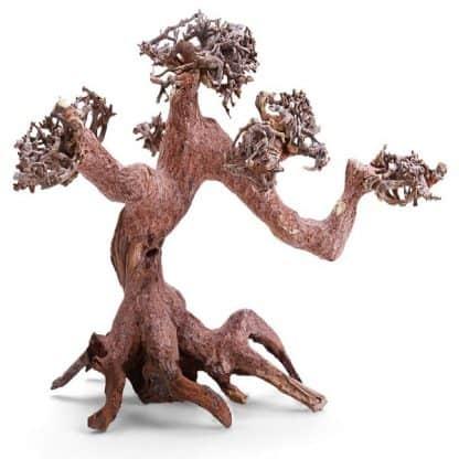Haquoss Bonsai Driftwood 3