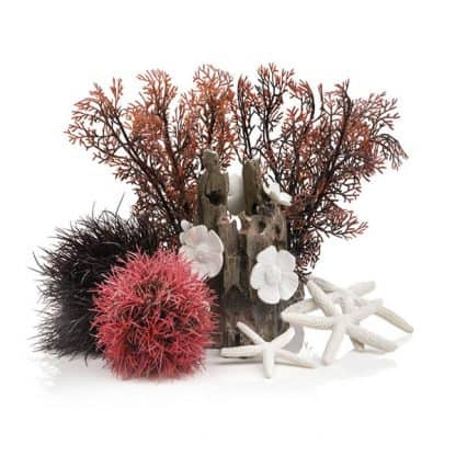 Oase Biorb Decor Set 15lt Red Forest
