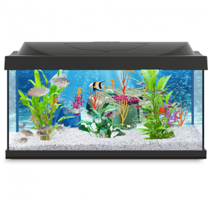 Tetra Playmobil 30lt Goldfish