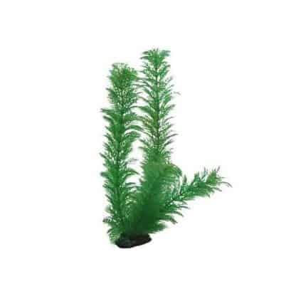 Hobby Egeria Densa 20cm