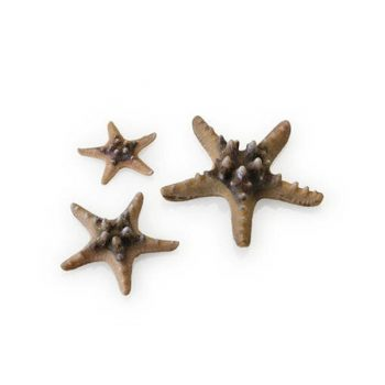 OASE ΒiOrb Decor sea star set 3 natural