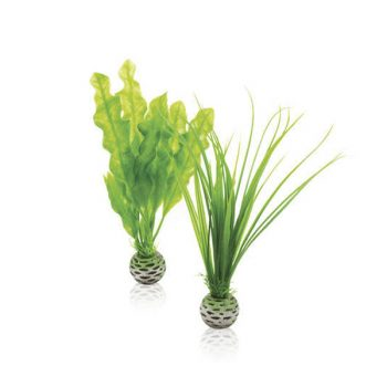 ΒiOrb Decor easy plant set S green