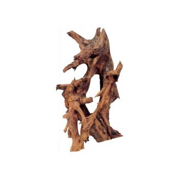 HAQUOSS Mangrovia Large 40-60cm (p/kg)