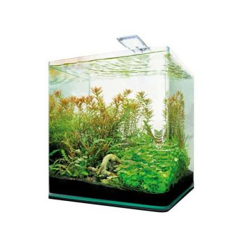 DENNERLE NANOCube Complete+ 20 L -Style LED M