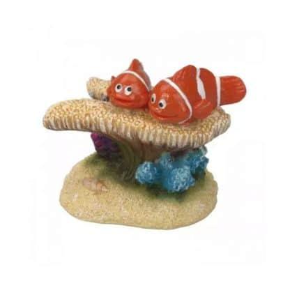 Aqua Della clown fish 7