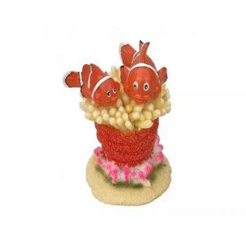 AQUA DELLA clown fish 5