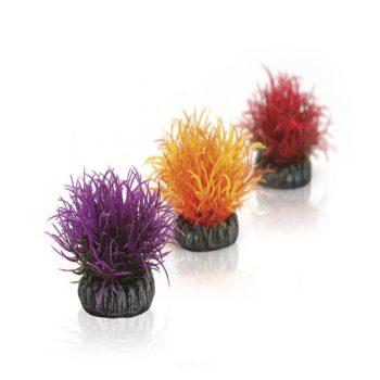 Oase Aquatic Colour Ball Set 3