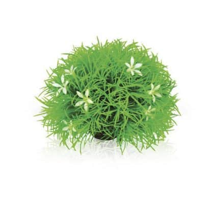 Oase Topiary Ball With Daisies