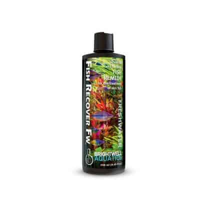 Brightwell Fish Recover Freshwater 250ml