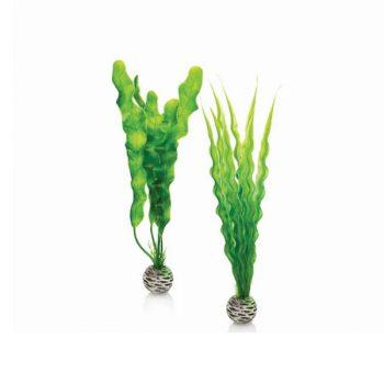 OASE ΒiOrb Decor Easy Plant Set M Green