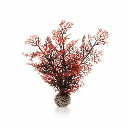 Oase Βiorb Decor Sea Fan S Crimson