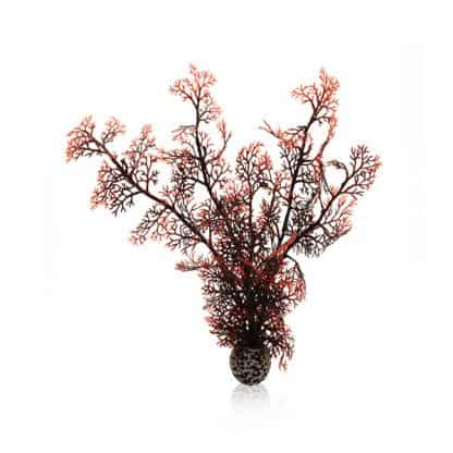 Oase Βiorb Decor Sea Fan M Crimson