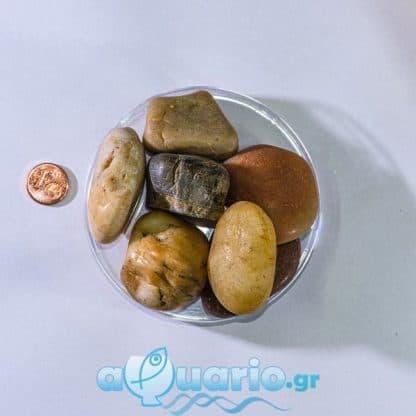 Pebble Shiny Yellow 2-4cm 1kg