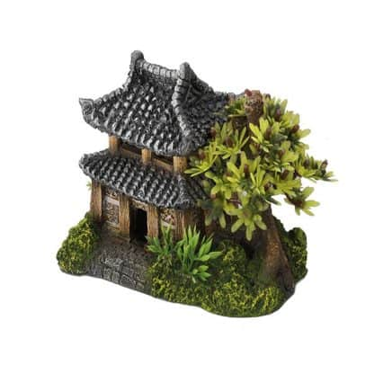 Aqua Della Asian House 14x9x10cm With Plants
