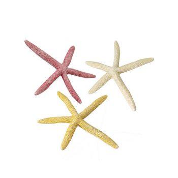 Aqua Della starfish L