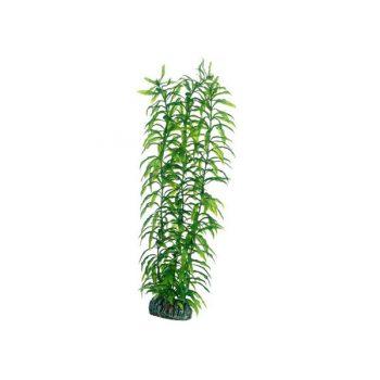 Hobby Heteranthera 34 cm
