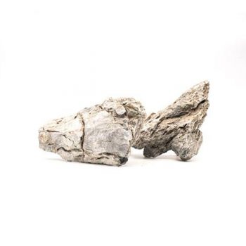 Aquario Seiryu SM stone price per kilo