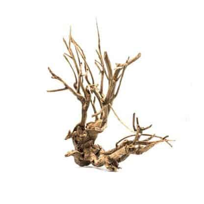 Aquario Savana Wood price per Kilo