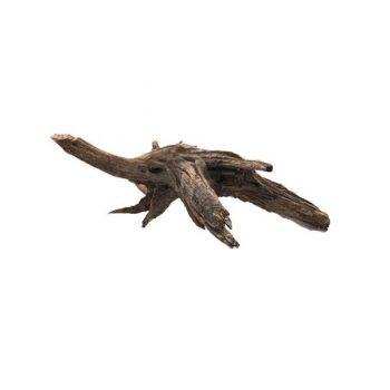 Aquario Ikebana Driftwood price per Kilo
