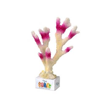 Aqua Della coral 26×18.5×7.5 cm