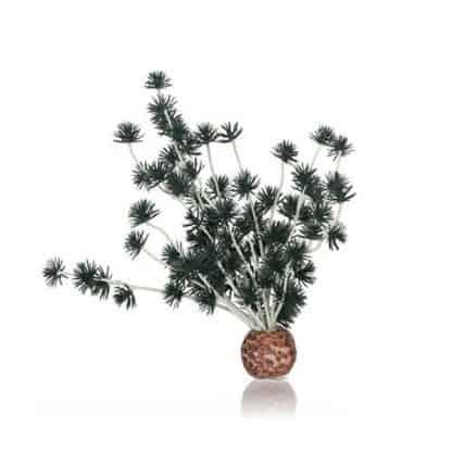 Oase biOrb Bonsai ball black