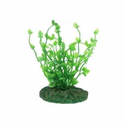 Aqua Nova Plastic plant 10cm