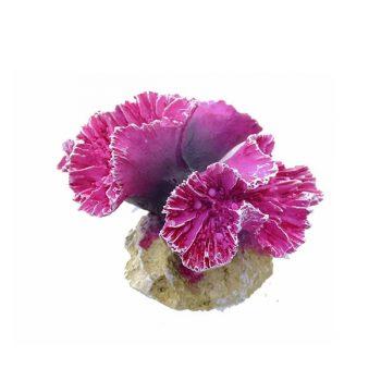 Aqua Della Symphylia S coral 8x8x7cm