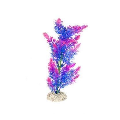 Aqua Della Plants Elodea 25cm