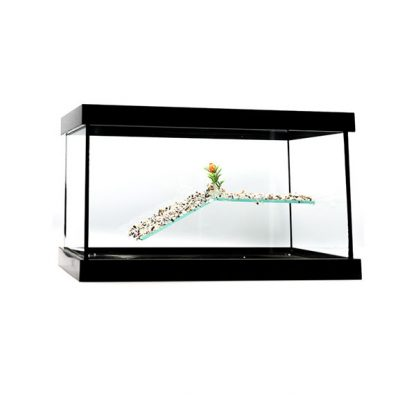 GCF χελωνιέρα γυάλινη μαύρη 40 cm