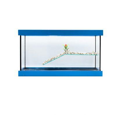 GCF χελωνιέρα γυάλινη μπλε 40 cm