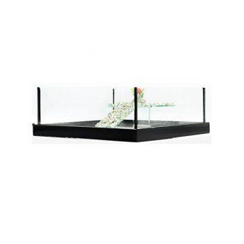 GCF χελωνιέρα γυάλινη τετράγωνη + πλαίσιο μαύρη 30cm