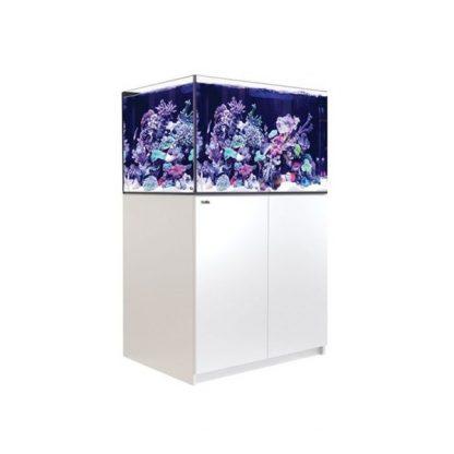 Red Sea Reefer XL 300 White