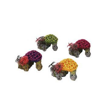 Aqua Della Miniset Coral 9,5×8,5x7CM