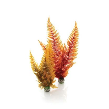 Oase BiOrb decor Aquatic autumn fern set