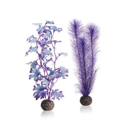 Oase Biorb Kelp Set M purple
